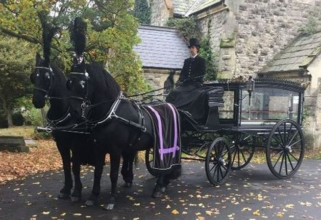 Horse Drawn Carriage W.S. Cole and Son Funeral Directors