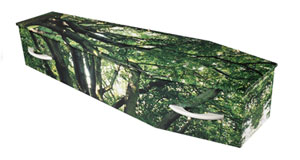 Personalised coffin - W.S. Cole and Son Funeral Directors